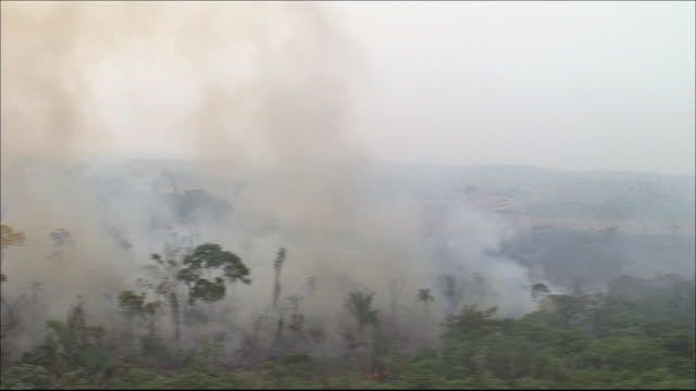 Smoke rising from charred land Remnant flames  Wide Shot  Aerial Shot