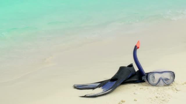 Snorkeling. HD loop