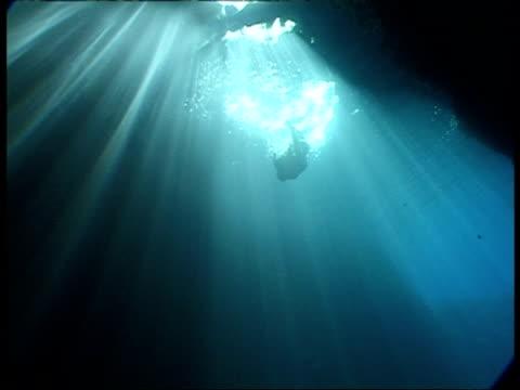 Snorkler swimming in sunbeams through water, MS, Tonga