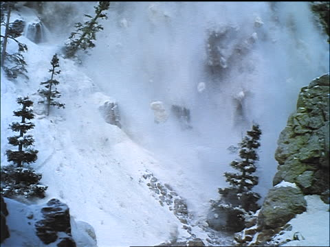 Snow avalanche on mountain knocking down pine trees / Seven Brides for Seven Brothers (1954)
