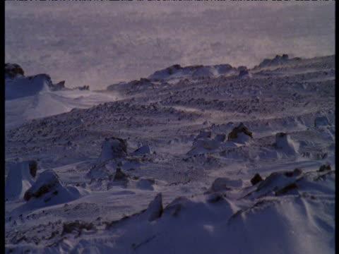 Snow blows over rocks, Dundas Peninsular, Melville Island