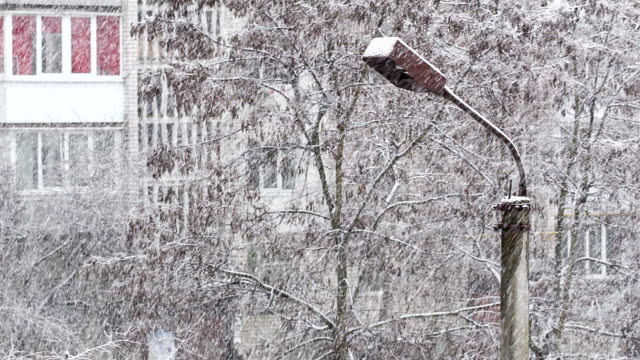 Snow cyclone over the city. Lamppost and trees covered with snow.