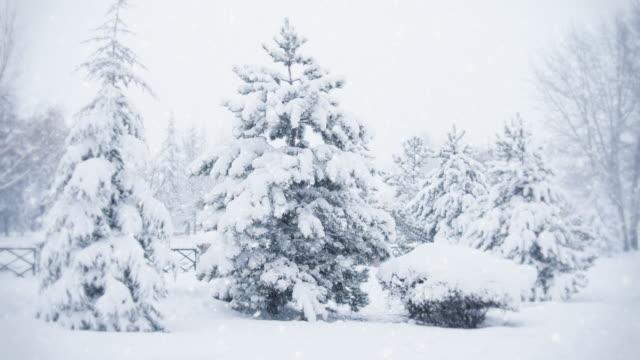 Snow Falling/Endlos wiederholbar