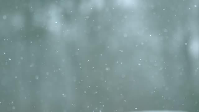 Snow Falling on Phantom Miro