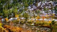 Schnee, Wald, Berg und Fluss