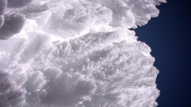 ECU PAN snow ghost tree crystals / Big White, British columbia, Canada