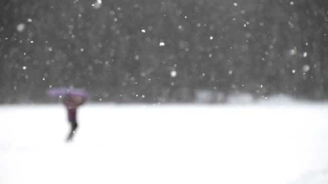 silhouette di neve