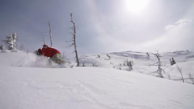 Snowboard neve fresca a