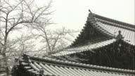 Snowfall In Kyoto