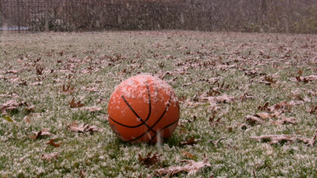 Snowflake. First winter flakes. Snow covered basketball in backyard. Snowfall.