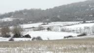 HD: Snowing on field