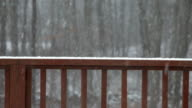 Snowing on the deck - HD 30P