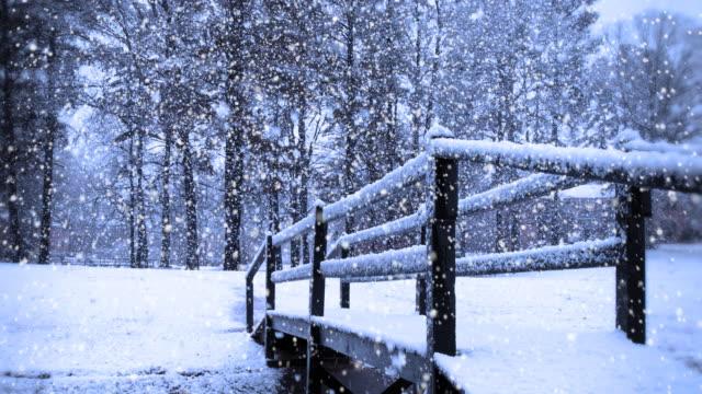 Nevicata Winnter giorno