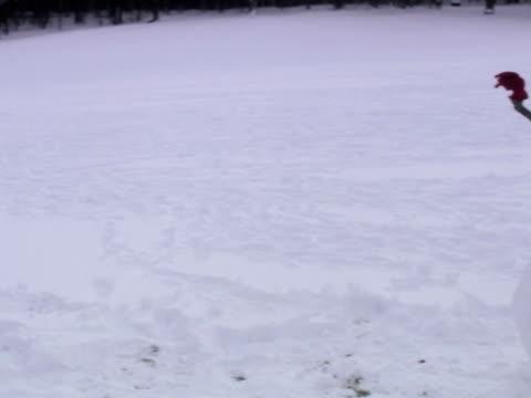 A snowman Sweden.