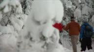 PAN snowshoeing through snowey trees / lake louise, alberta, canada
