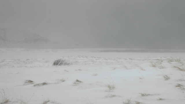 A snowstorm covers the northern coastline of Iceland.