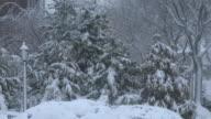 Snowstorm / Snow Falling, Winter Storm Scenes - Queens, NYC
