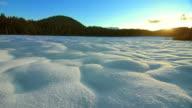 Snowy Mountain Meadow