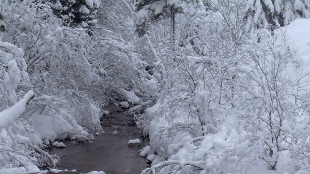 snowy stream 1