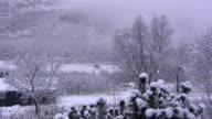 Snowy suburbs.