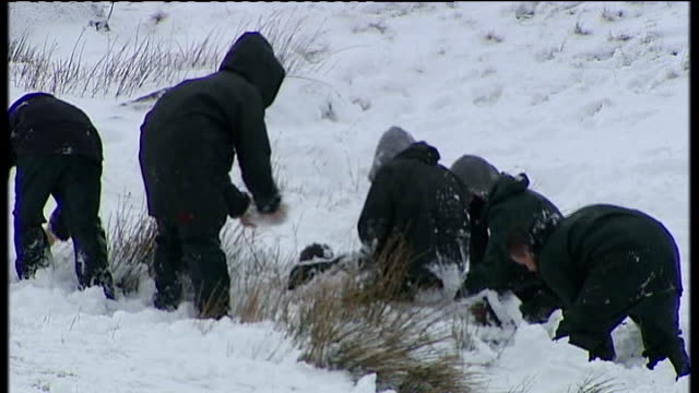 Brecon Beacons School children playing in snow Father and daughter on sledge along down hill as falling off