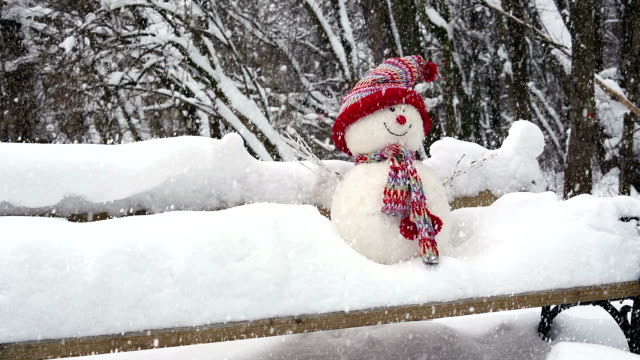 Snwoman with Snow Fall