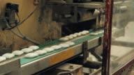 MS PAN Soap manufacturing process, Godrej Soaps Limited /  Malanpur, Madhya Pradesh, India