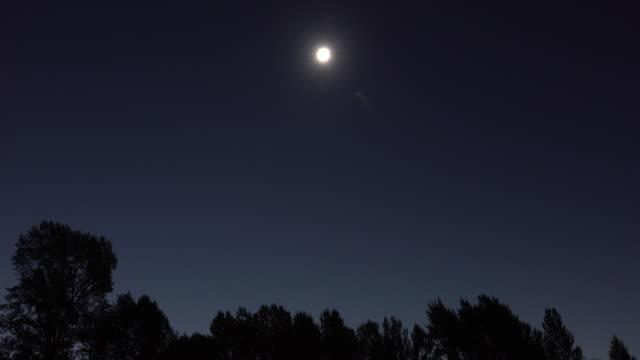 Zonsverduistering totaliteit lichte naar donkere Snake River tree tops Jackson Hole, Wyoming