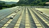 Veduta aerea di pannelli solari in uno stabilimento industriale