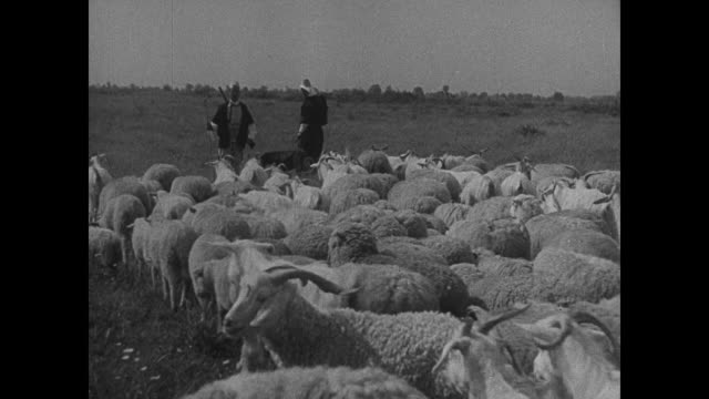 ALBANIA Soldiers walking in field VS Border outpost VS Farmers 'hillmen' w/ sheep NIGHT VS Albania mountaineers cooking on open campfires