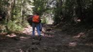 Zoon en moeder bos verkennen op het wandelpad