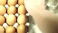 Ordinare uova