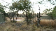 South African scenics and wildlife