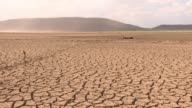 South Africas farmers are waiting for the rainy season as a drought leaves them reeling in at least five of the countrys nine provinces