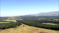 South West Corner Of Swaziland  - Aerial View - Mpumalanga,  South Africa