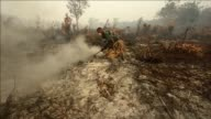 Southeast Asia has been enveloped in choking haze from agricultural fires in Indonesia over the past fortnight prompting flight cancellations closing...