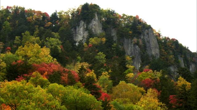 Souunkyou  Momizidani  autumn leaves  precipitous cliff