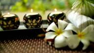 Spa Wellness Decorations