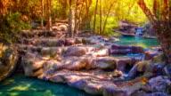Sparkling stream in a spring woodland
