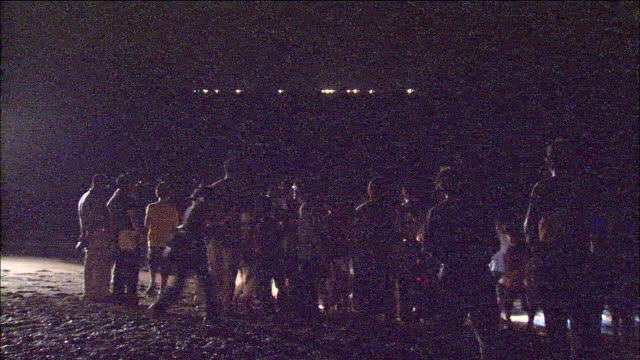 Spectators wait to see green sea turtles hatching at night.