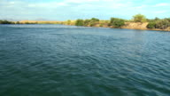 POV Speed boat on Colorado River with desert shoreline with green vegetation close to water, Blythe, California, USA