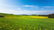 TIME LAPE: Spring Landscape