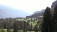 AERIAL Springtime meadows