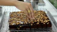 Sprinkle cashew on brownies