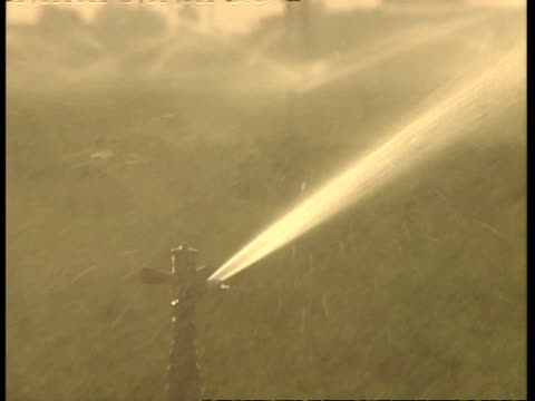CU sprinkler head as it sprays water over field