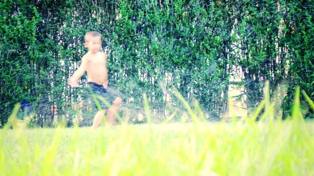 Sprinkler in the Yard, Summer