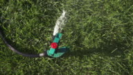 CU Sprinkler spraying water in grass / Farmington, Connecticut, United States