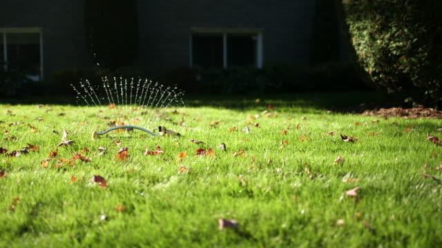 MS of sprinkler starting to spray water