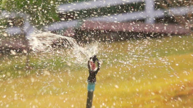 Sprinkler (Super Slow Motion)