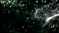 Sprinkler water, slow motion shot